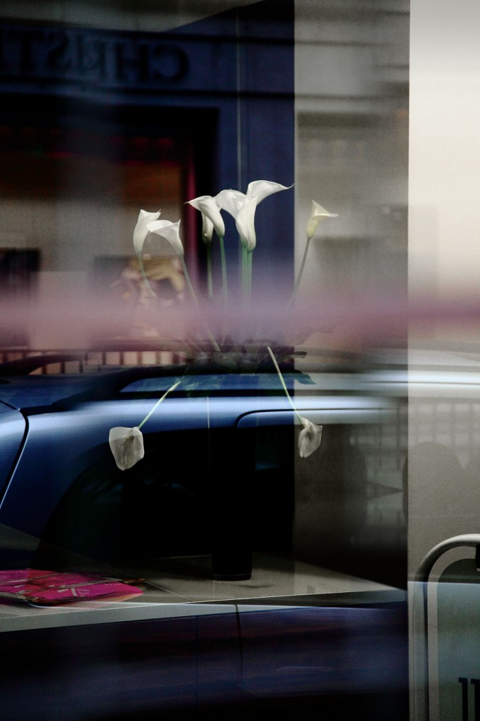 UNTITLED, 2010, PHOTOGRAPH.  18 x 24 inches, FLOWER IN WINDOW