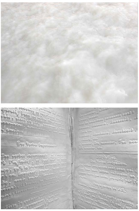 UNTITLED DIPTYCH, 2010, PHOTOGRAPH, 50 x 34 inches (TOP TO BOTTOM) THE WHITE MURKY WATERS OF THE RIVER THAMES, LONDON; LOUIS BRAILLE'S FIRST HAND-MADE TOUCH BOOK, COUPVRAY, FRANCE