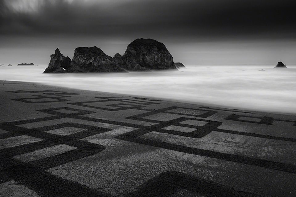 SQUARE ROOTS – Pete's Beach, CA. Photo: Henthorne. EarthScape: Andres Amador
